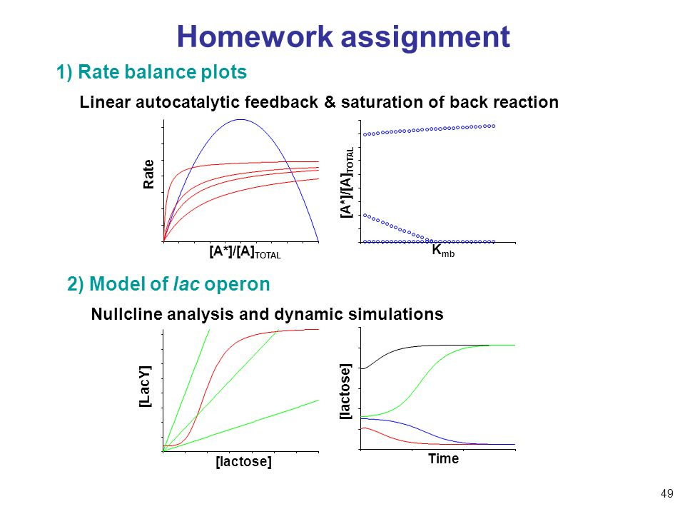 Homework assignment 1) Rate balance plots Linear autocatalytic feedback & saturation of back reaction Rate [A*]/[A] TOTAL K mb [A*]/[A] TOTAL 2) Model of lac operon Nullcline analysis and dynamic simulations [lactose] [LacY] [lactose] Time 49