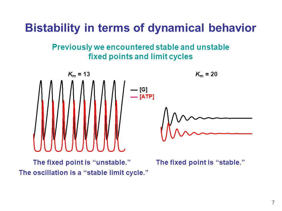 Bistability in terms of dynamical behavior Previously we encountered stable and unstable fixed points and limit cycles K m = 20K m = 13 [G] [ATP] The fixed point is unstable. The oscillation is a stable limit cycle. The fixed point is stable. 7
