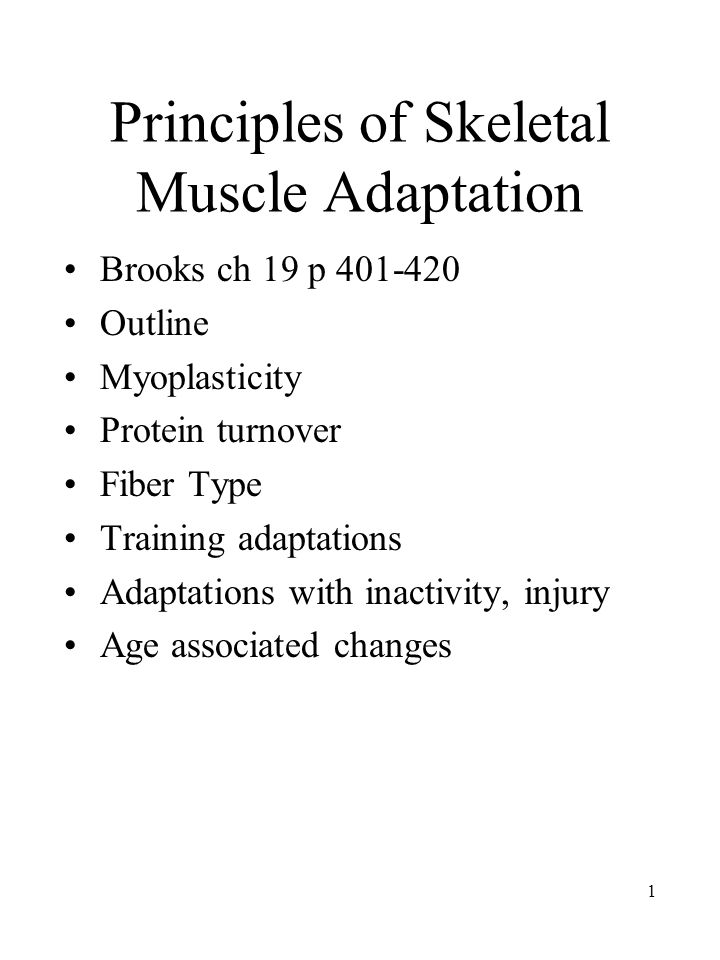 1 Principles of Skeletal Muscle Adaptation Brooks ch 19 p 401-420 Outline Myoplasticity Protein turnover Fiber Type Training adaptations Adaptations with inactivity, injury Age associated changes
