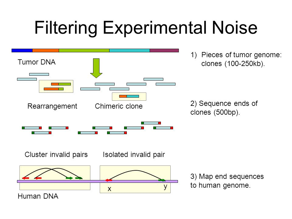 Filtering Experimental Noise 1)Pieces of tumor genome: clones (100-250kb).
