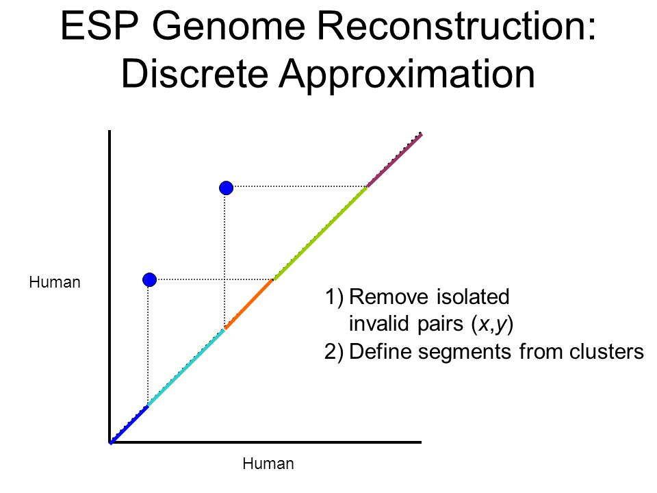 Human 2)Define segments from clusters ESP Genome Reconstruction: Discrete Approximation 1)Remove isolated invalid pairs (x,y)