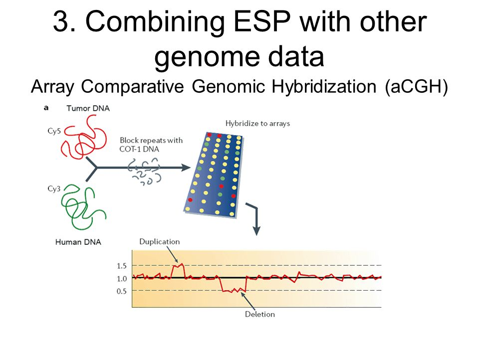 Array Comparative Genomic Hybridization (aCGH) 3. Combining ESP with other genome data