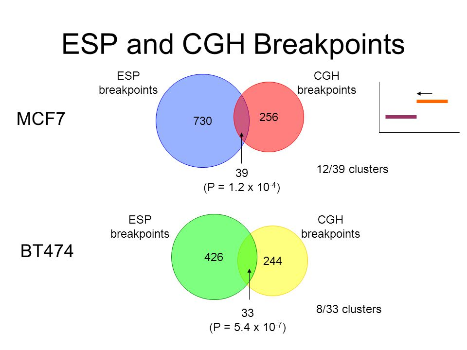 ESP and CGH Breakpoints BT474 MCF7 ESP breakpoints CGH breakpoints 33 (P = 5.4 x 10 -7 ) 244 426 39 (P = 1.2 x 10 -4 ) 730 ESP breakpoints CGH breakpoints 256 12/39 clusters 8/33 clusters
