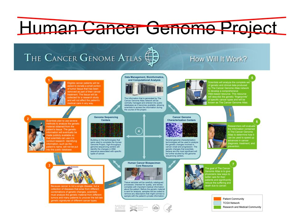 Human Cancer Genome Project