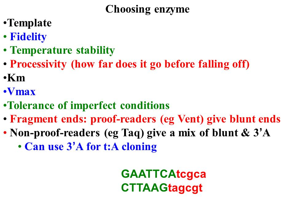 Choosing enzyme Template Fidelity Temperature stability Processivity (how far does it go before falling off) Km Vmax Tolerance of imperfect conditions