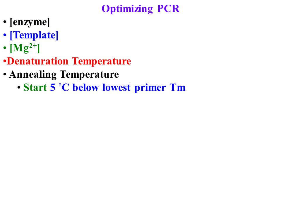 Optimizing PCR [enzyme] [Template] [Mg 2+ ] Denaturation Temperature Annealing Temperature Start 5 ˚C below lowest primer Tm