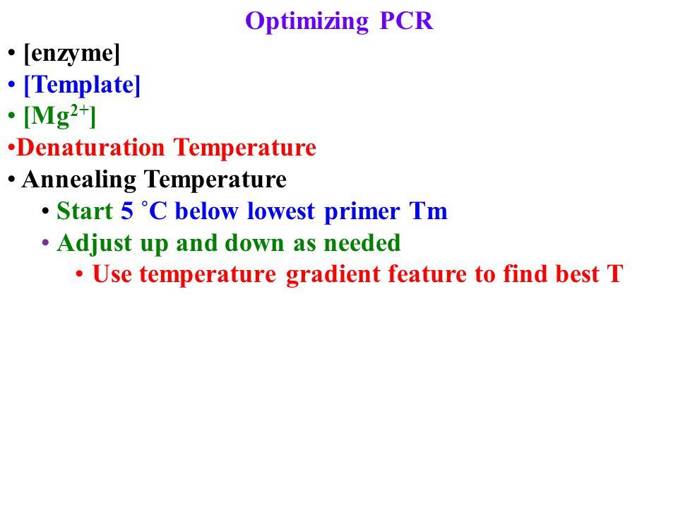 Optimizing PCR [enzyme] [Template] [Mg 2+ ] Denaturation Temperature Annealing Temperature Start 5 ˚C below lowest primer Tm Adjust up and down as needed Use temperature gradient feature to find best T
