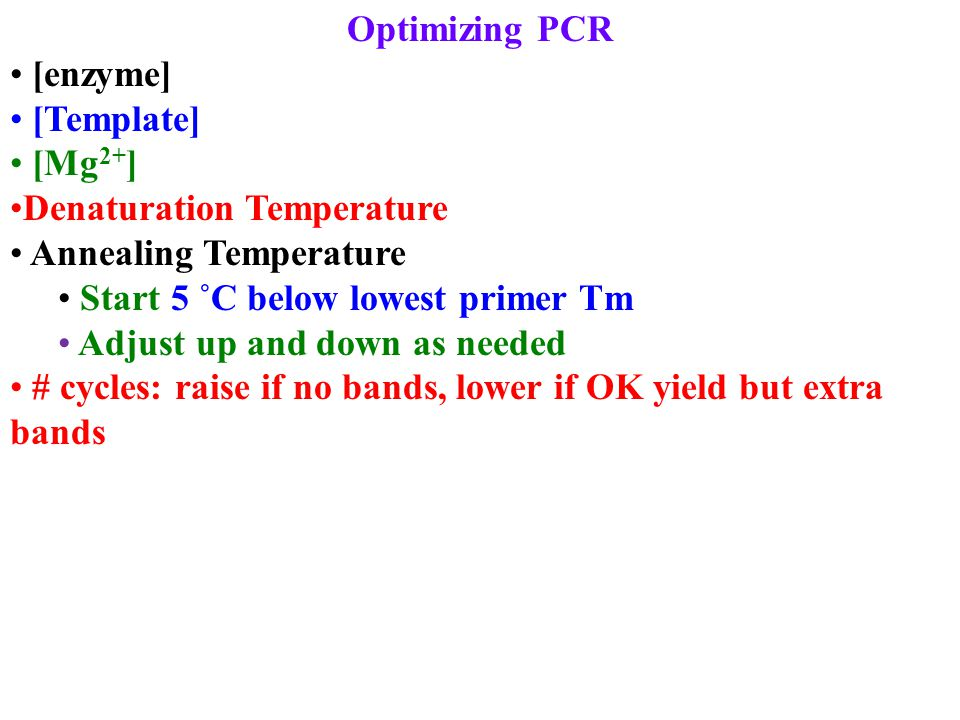 Optimizing PCR [enzyme] [Template] [Mg 2+ ] Denaturation Temperature Annealing Temperature Start 5 ˚C below lowest primer Tm Adjust up and down as needed # cycles: raise if no bands, lower if OK yield but extra bands