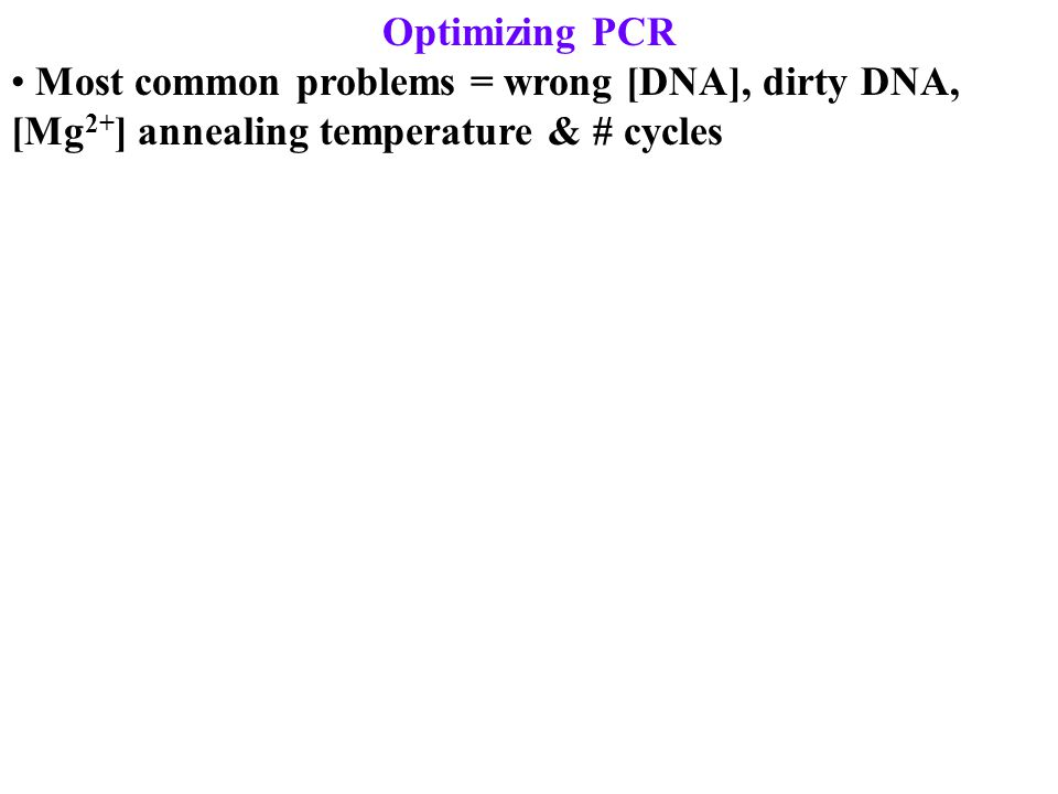 Optimizing PCR Most common problems = wrong [DNA], dirty DNA, [Mg 2+ ] annealing temperature & # cycles