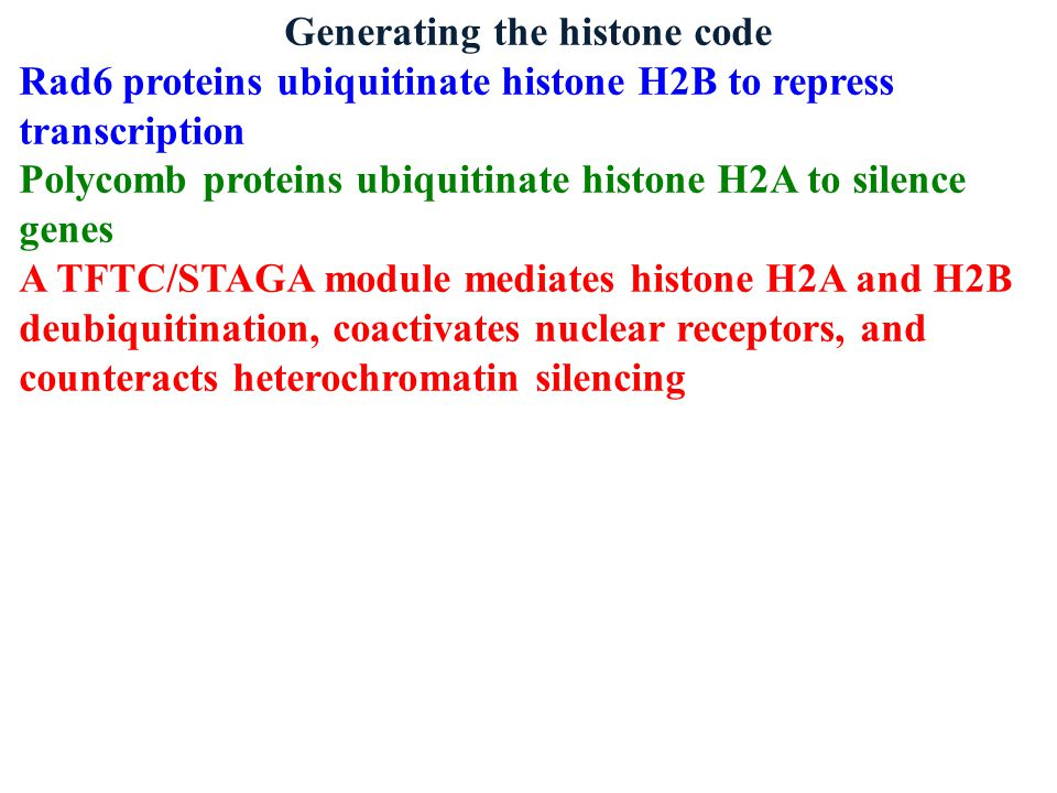 Generating the histone code Rad6 proteins ubiquitinate histone H2B to repress transcription Polycomb proteins ubiquitinate histone H2A to silence genes A TFTC/STAGA module mediates histone H2A and H2B deubiquitination, coactivates nuclear receptors, and counteracts heterochromatin silencing