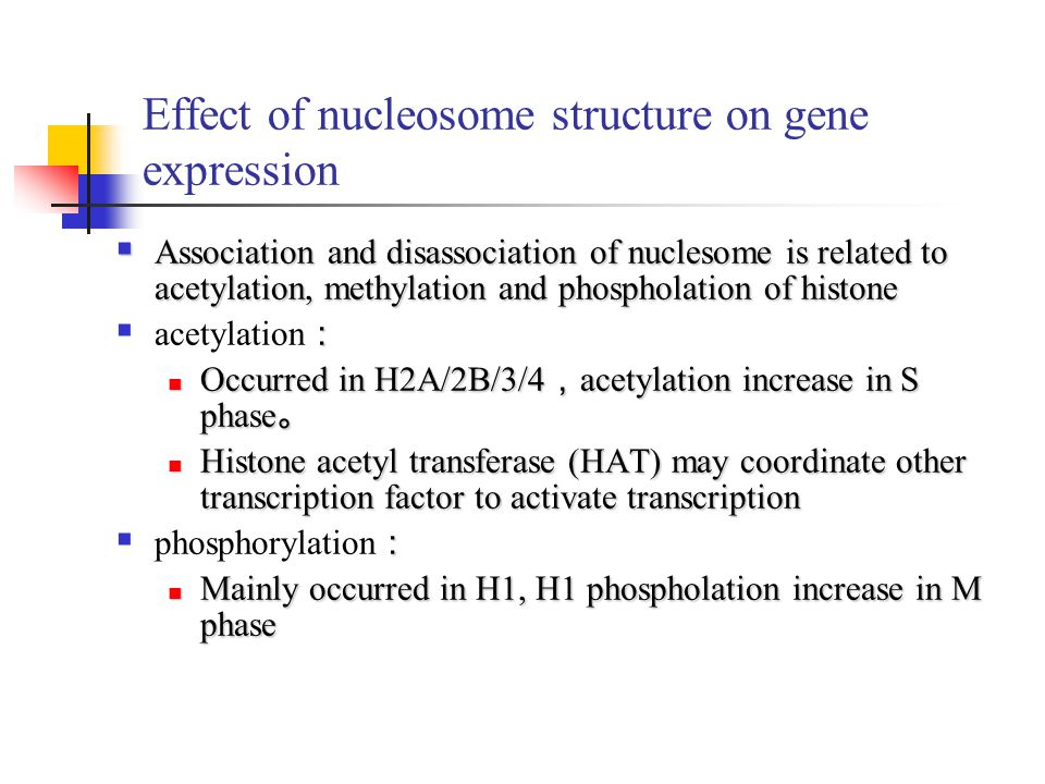 Effect of nucleosome structure on gene expression  Association and disassociation of nuclesome is related to acetylation, methylation and phospholati