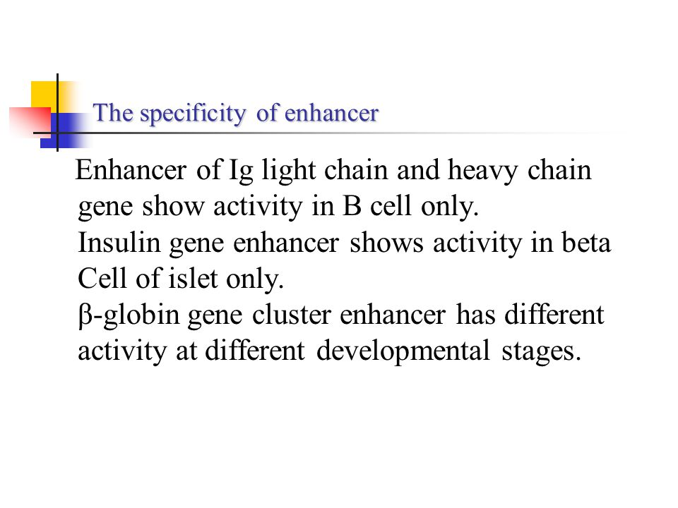 The specificity of enhancer Enhancer of Ig light chain and heavy chain gene show activity in B cell only. Insulin gene enhancer shows activity in beta