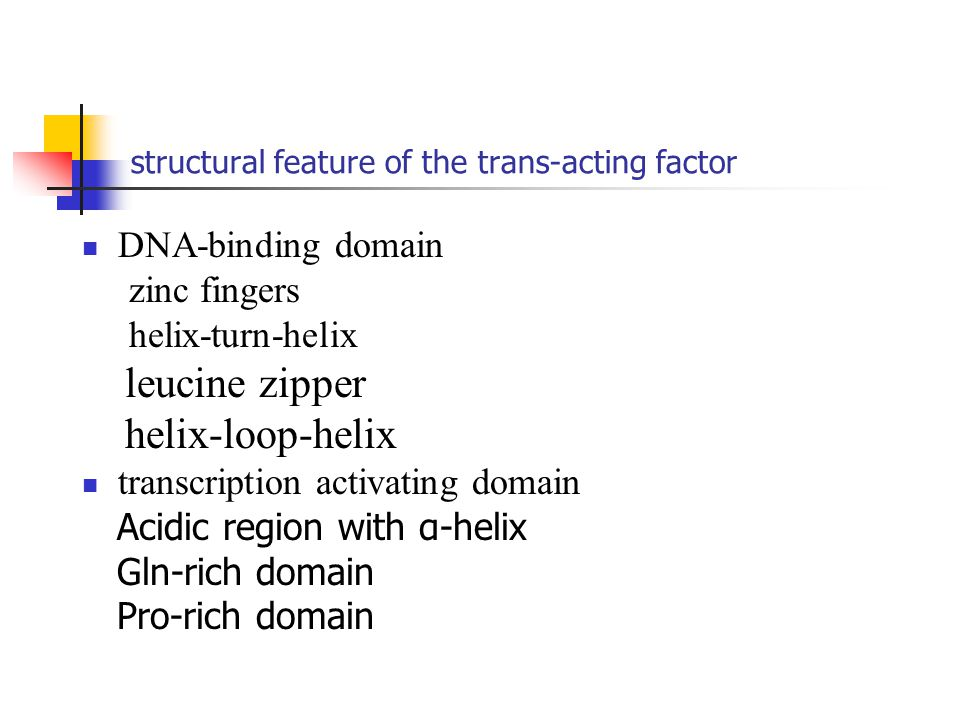 structural feature of the trans-acting factor DNA-binding domain zinc fingers helix-turn-helix leucine zipper helix-loop-helix transcription activatin