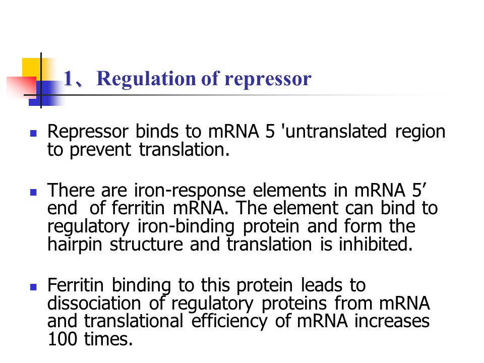 1 、 1 、 Regulation of repressor Repressor binds to mRNA 5 'untranslated region to prevent translation. There are iron-response elements in mRNA 5' end