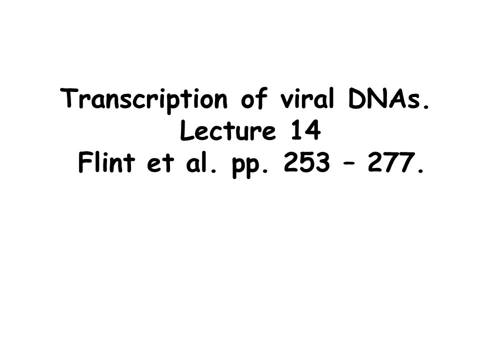 Transcription of viral DNAs. Lecture 14 Flint et al. pp. 253 – 277.