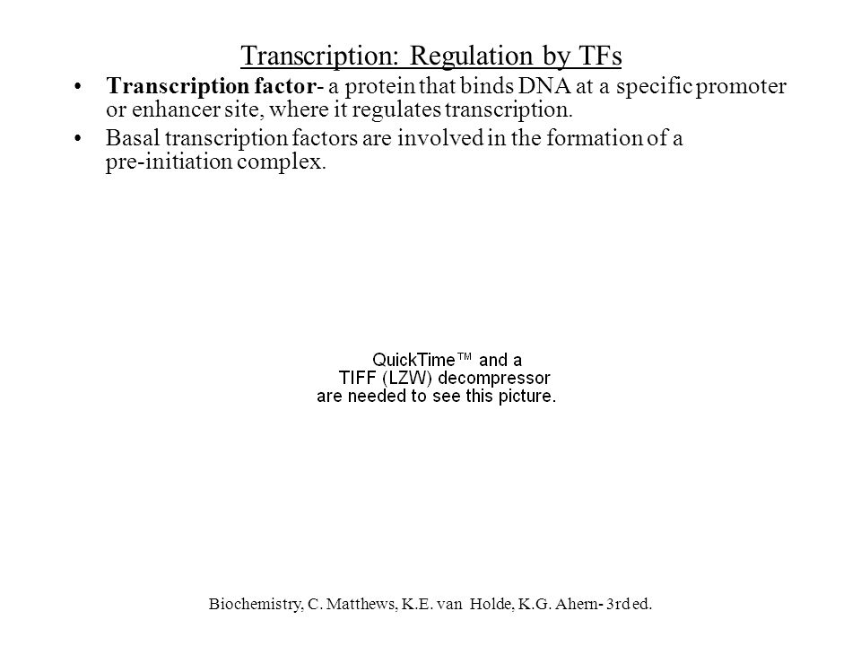Biochemistry, C. Matthews, K.E. van Holde, K.G. Ahern- 3rd ed. Transcription: Regulation by TFs Transcription factor- a protein that binds DNA at a sp
