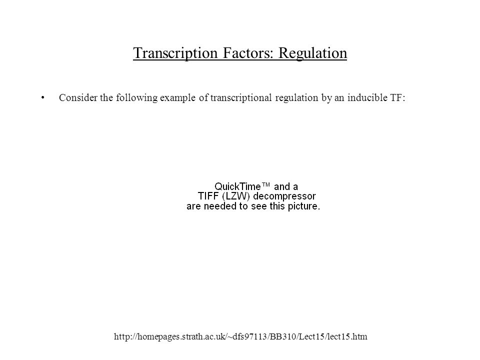 http://homepages.strath.ac.uk/~dfs97113/BB310/Lect15/lect15.htm Transcription Factors: Regulation Consider the following example of transcriptional regulation by an inducible TF: