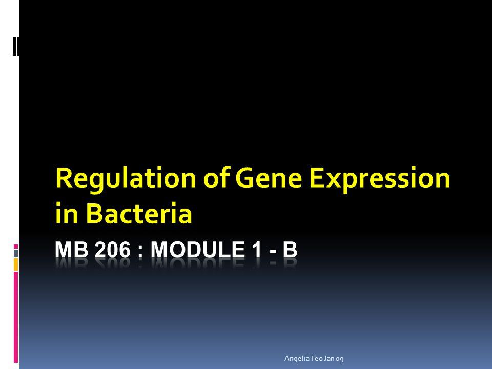 Angelia Teo Jan 09 Regulation of Gene Expression in Bacteria