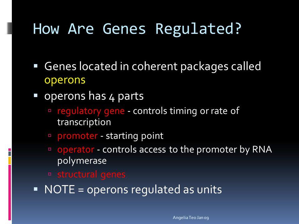 Principles of Gene Regulation Angelia Teo Jan 09