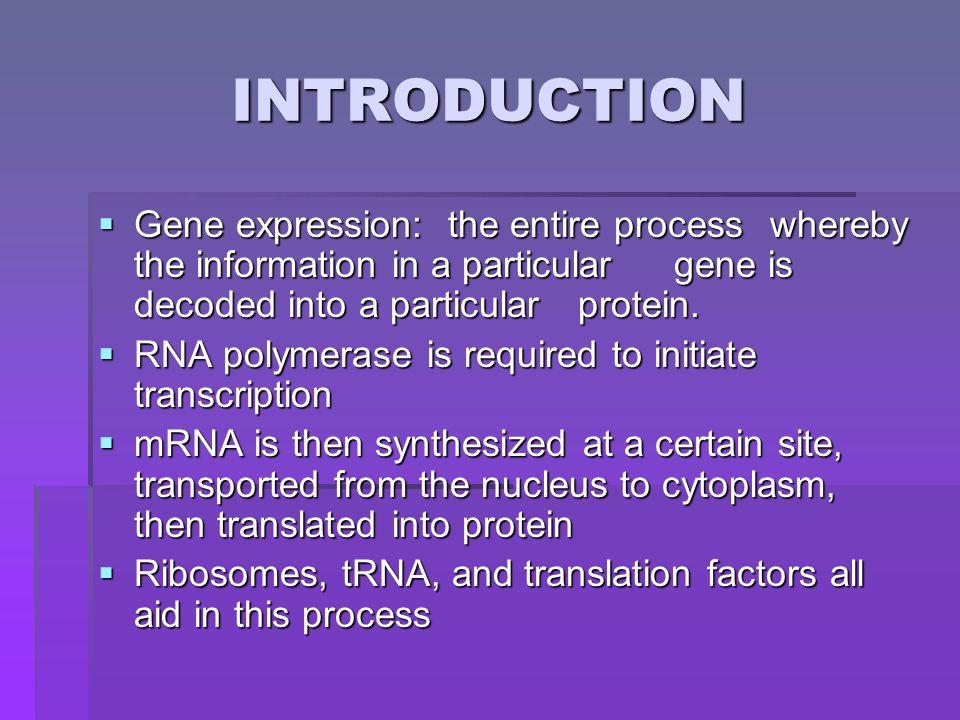 CH. 11 : Transcriptional Control of Gene Expression Jennifer Brown