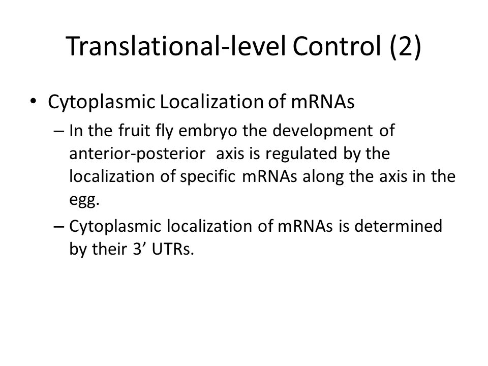 Translational-level Control (2) Cytoplasmic Localization of mRNAs – In the fruit fly embryo the development of anterior-posterior axis is regulated by the localization of specific mRNAs along the axis in the egg.