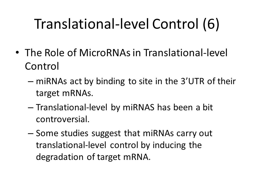 Translational-level Control (6) The Role of MicroRNAs in Translational-level Control – miRNAs act by binding to site in the 3'UTR of their target mRNAs.