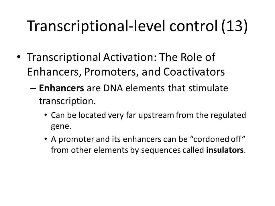Transcriptional-level control (13) Transcriptional Activation: The Role of Enhancers, Promoters, and Coactivators – Enhancers are DNA elements that stimulate transcription.