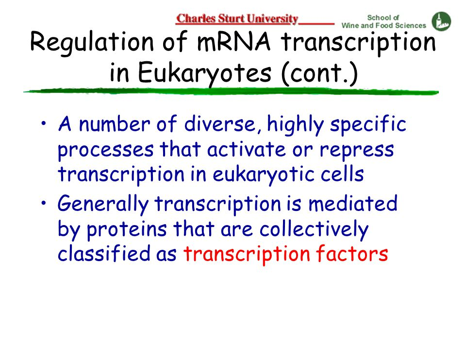 Regulation of mRNA transcription in Eukaryotes (cont.) A number of diverse, highly specific processes that activate or repress transcription in eukaryotic cells Generally transcription is mediated by proteins that are collectively classified as transcription factors