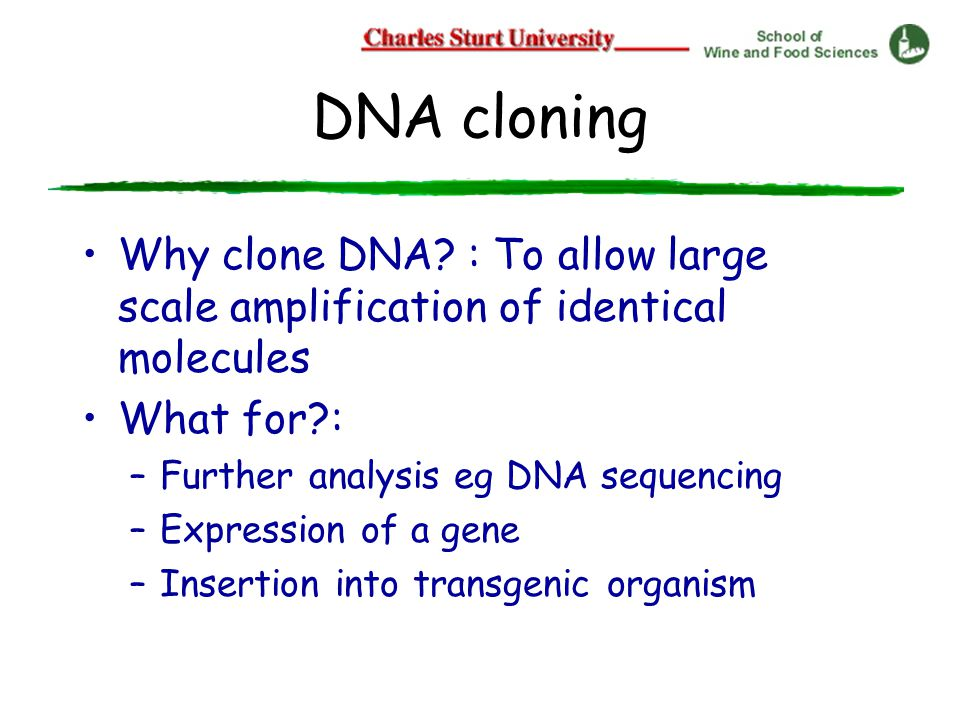 DNA cloning Why clone DNA.