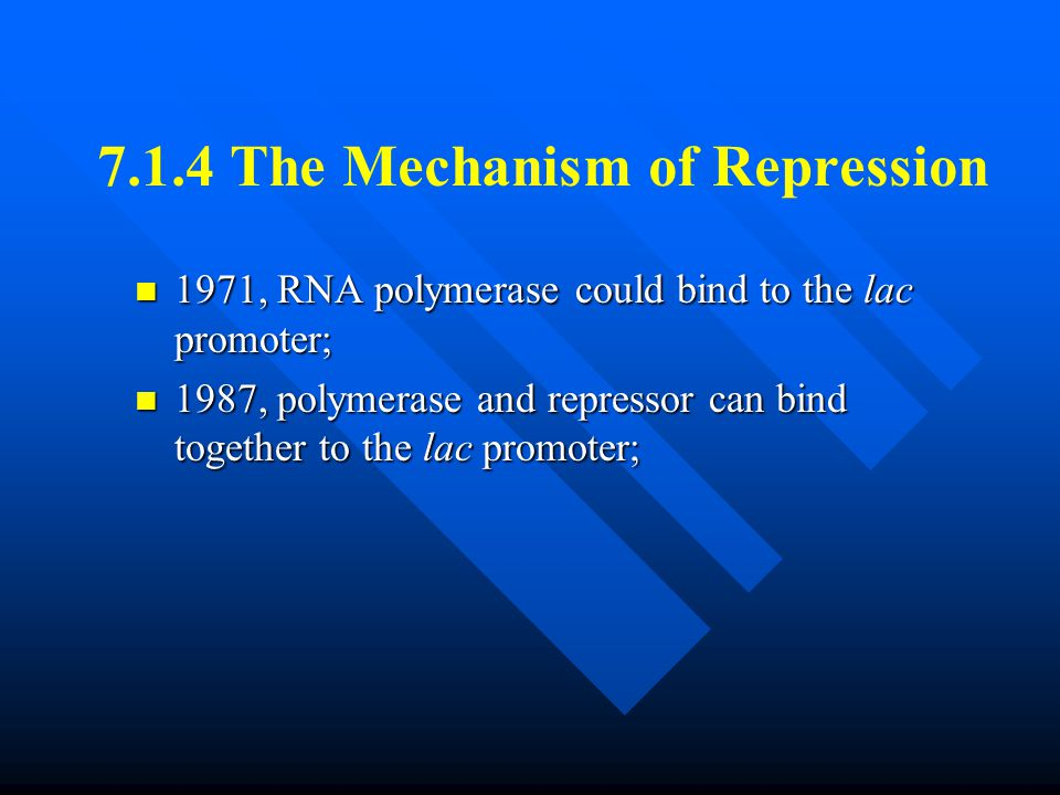 7.1.4 The Mechanism of Repression 1971, RNA polymerase could bind to the lac promoter; 1971, RNA polymerase could bind to the lac promoter; 1987, poly
