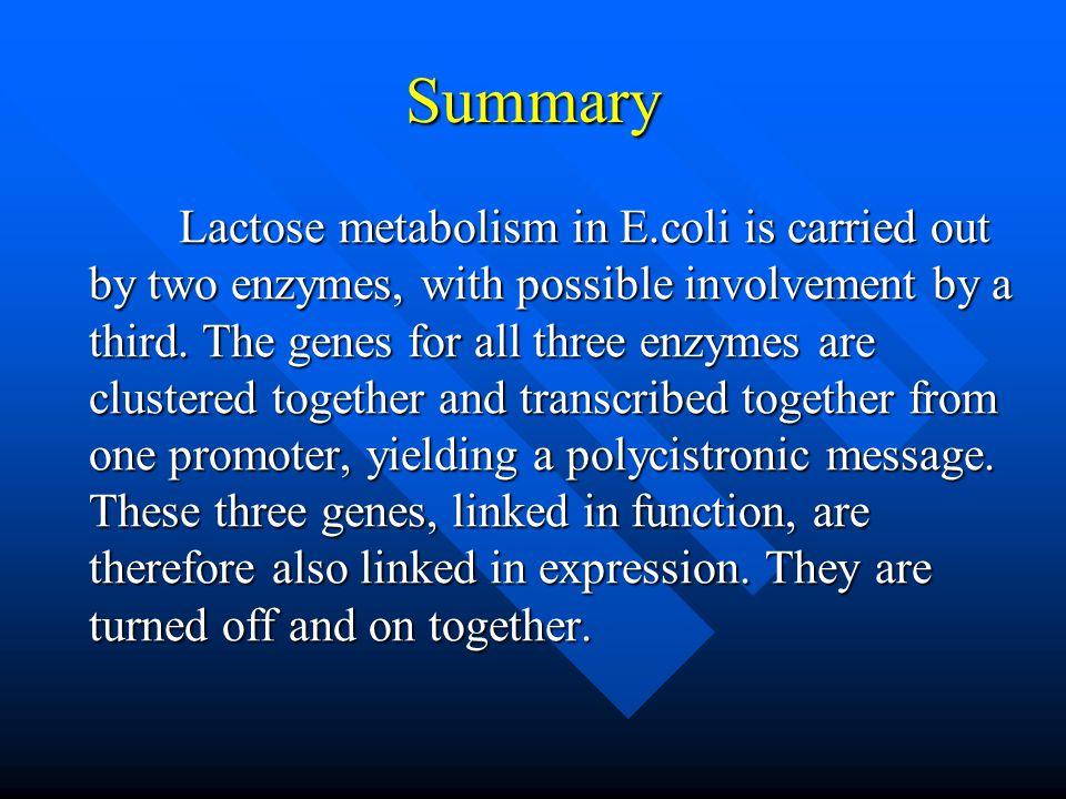 7.1.1 Negative Control of the lac Operon lac repressor, product of regulatory gene, lacI; lac repressor, product of regulatory gene, lacI; Allosteric protein Allosteric protein Inducer, allolactose Inducer, allolactose