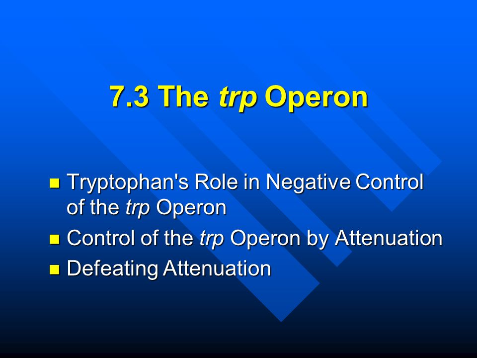 7.3 The trp Operon Tryptophan's Role in Negative Control of the trp Operon Tryptophan's Role in Negative Control of the trp Operon Control of the trp