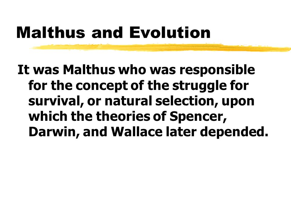 Malthus and Evolution It was Malthus who was responsible for the concept of the struggle for survival, or natural selection, upon which the theories of Spencer, Darwin, and Wallace later depended.