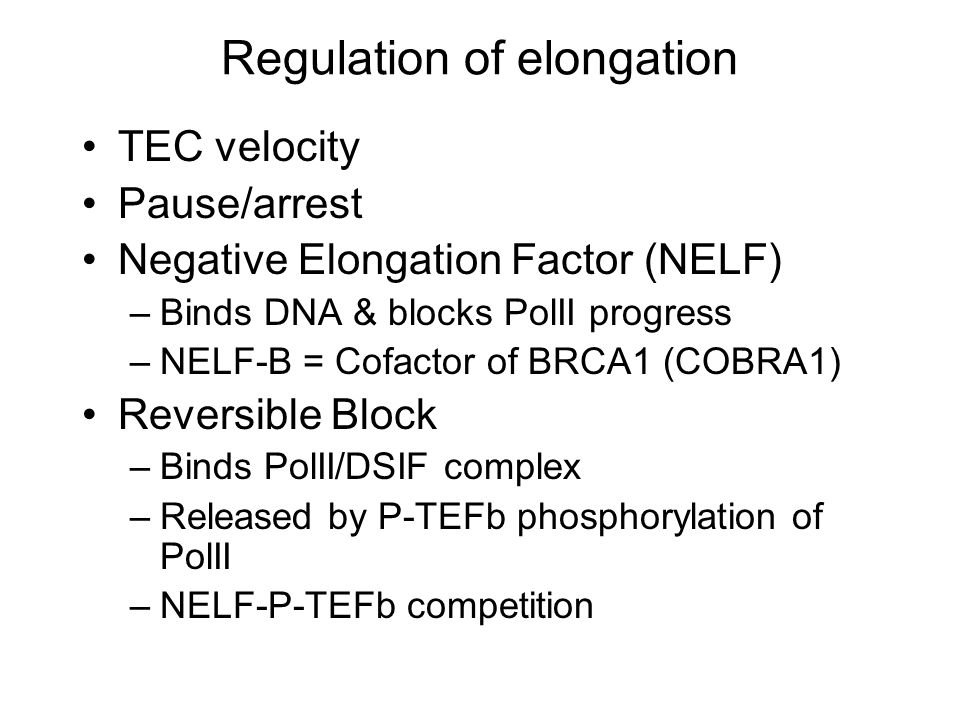 Regulation of elongation TEC velocity Pause/arrest Negative Elongation Factor (NELF) –Binds DNA & blocks PolII progress –NELF-B = Cofactor of BRCA1 (COBRA1) Reversible Block –Binds PolII/DSIF complex –Released by P-TEFb phosphorylation of PolII –NELF-P-TEFb competition