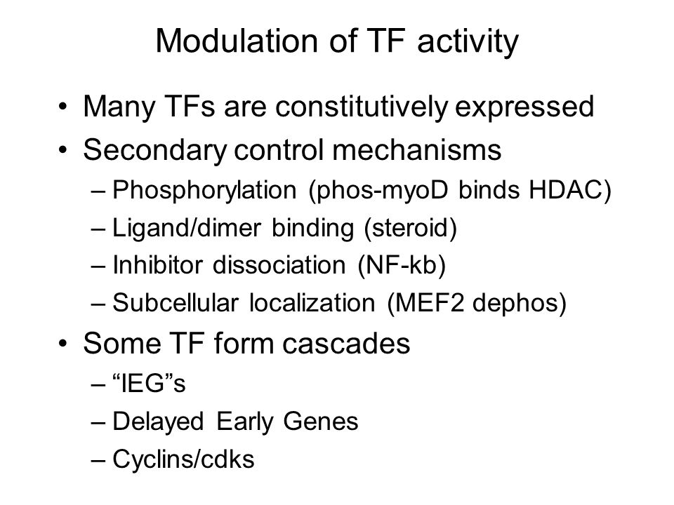 Modulation of TF activity Many TFs are constitutively expressed Secondary control mechanisms –Phosphorylation (phos-myoD binds HDAC) –Ligand/dimer binding (steroid) –Inhibitor dissociation (NF-kb) –Subcellular localization (MEF2 dephos) Some TF form cascades – IEG s –Delayed Early Genes –Cyclins/cdks