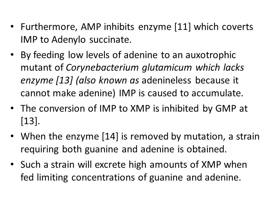 Furthermore, AMP inhibits enzyme [11] which coverts IMP to Adenylo succinate. By feeding low levels of adenine to an auxotrophic mutant of Corynebacte