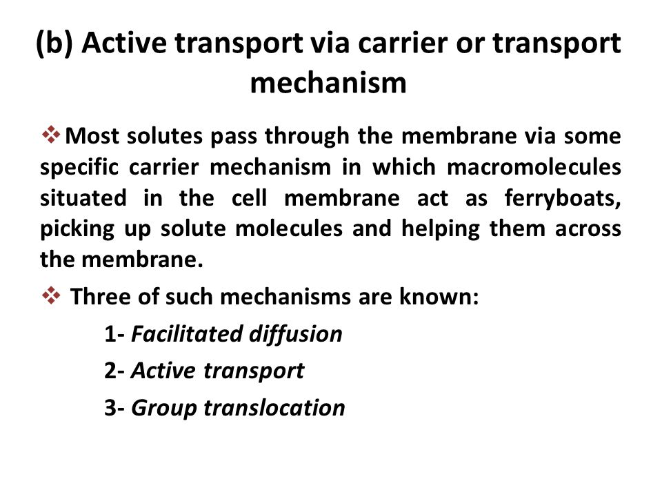 (b) Active transport via carrier or transport mechanism  Most solutes pass through the membrane via some specific carrier mechanism in which macromol