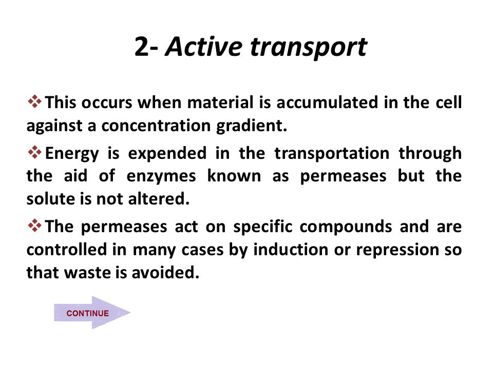 2- Active transport  This occurs when material is accumulated in the cell against a concentration gradient.  Energy is expended in the transportatio