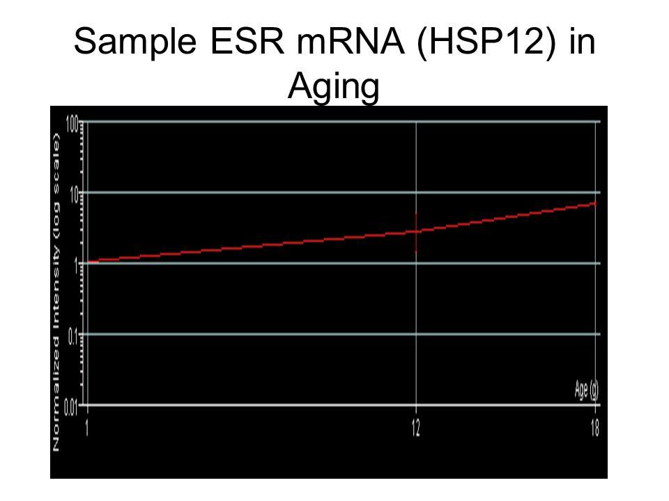 Sample ESR mRNA (HSP12) in Aging