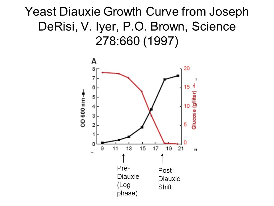 Yeast Diauxie Growth Curve from Joseph DeRisi, V. Iyer, P.O. Brown, Science 278:660 (1997) Pre- Diauxie (Log phase) Post Diauxic Shift