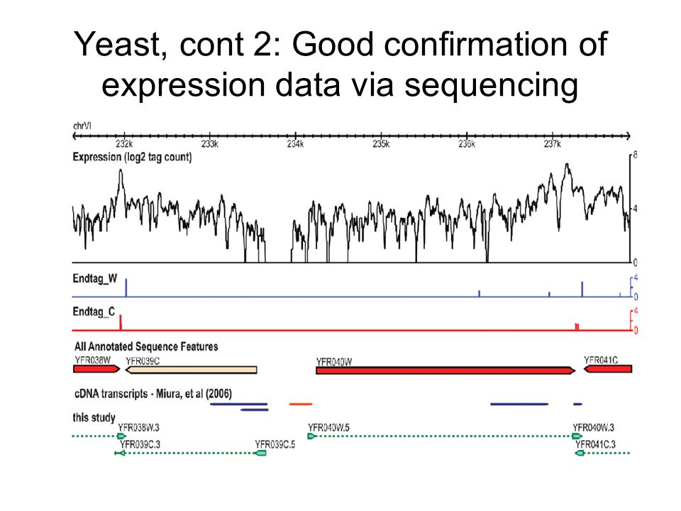 Yeast, cont 2: Good confirmation of expression data via sequencing