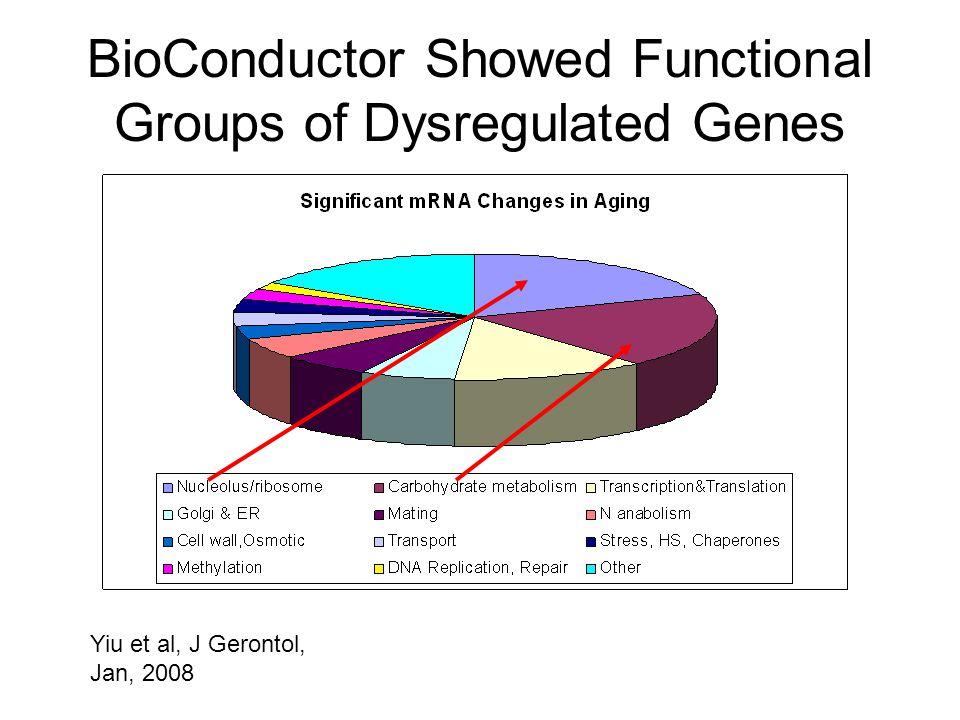 BioConductor Showed Functional Groups of Dysregulated Genes Yiu et al, J Gerontol, Jan, 2008