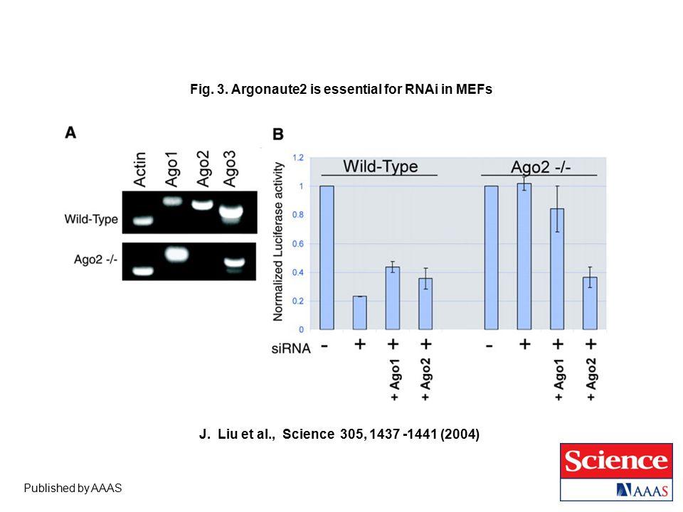 Published by AAAS J. Liu et al., Science 305, 1437 -1441 (2004) Fig.