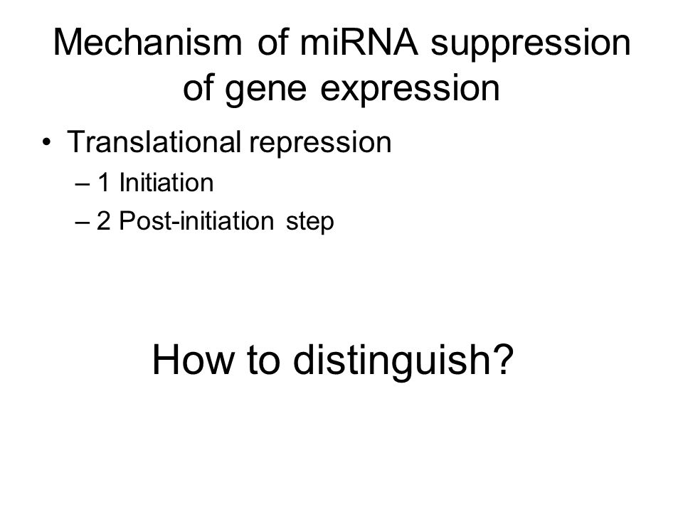 miRNA can repress and activate translation
