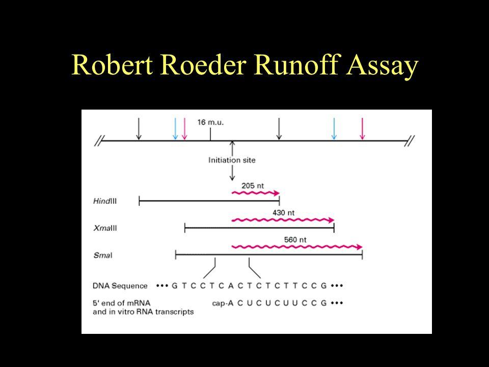 Robert Roeder Runoff Assay