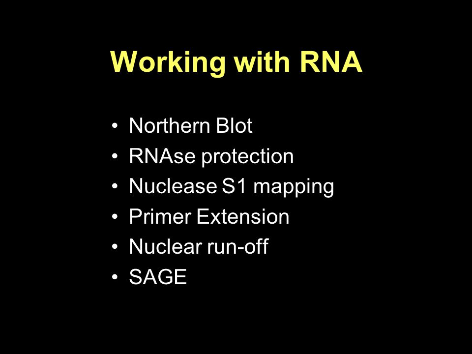 Working with RNA Northern Blot RNAse protection Nuclease S1 mapping Primer Extension Nuclear run-off SAGE