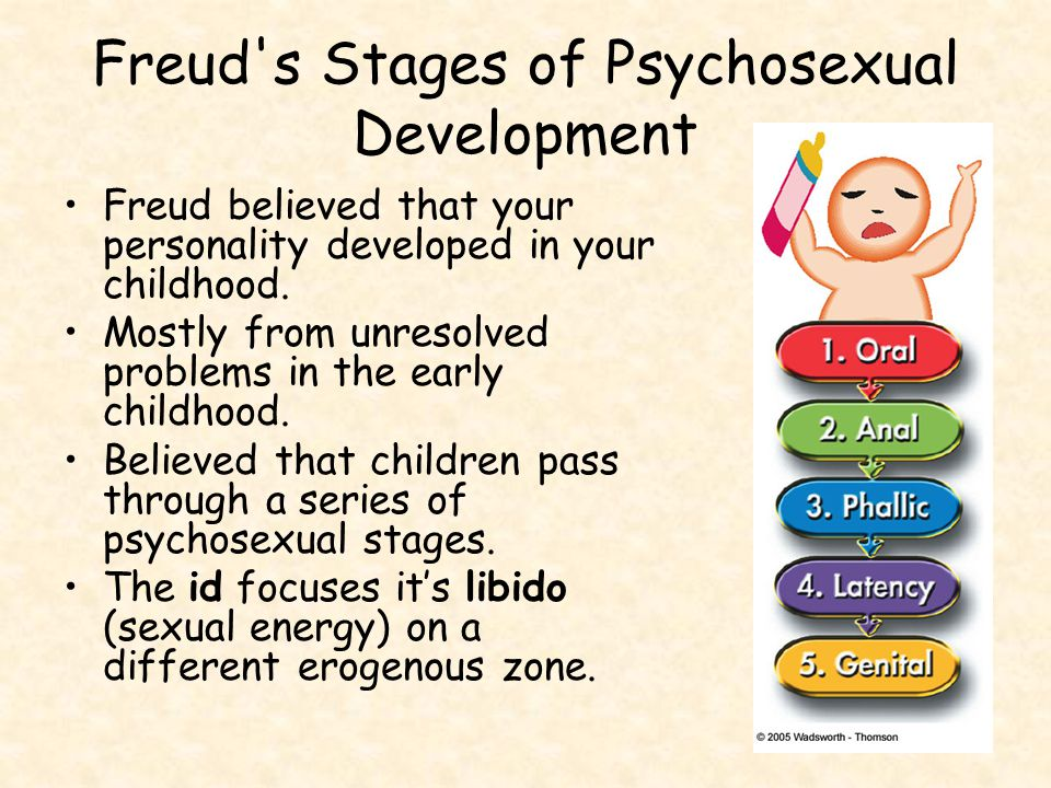 Freud s Stages of Psychosexual Development Freud believed that your personality developed in your childhood.