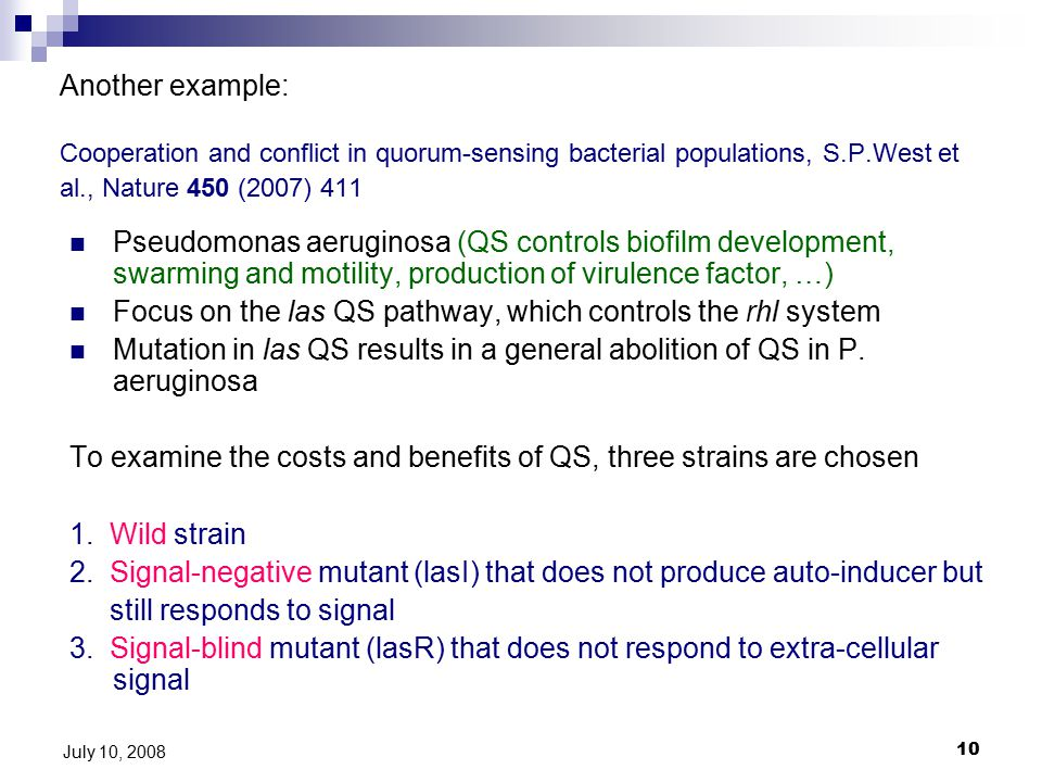 10 July 10, 2008 Another example: Cooperation and conflict in quorum-sensing bacterial populations, S.P.West et al., Nature 450 (2007) 411 Pseudomonas aeruginosa (QS controls biofilm development, swarming and motility, production of virulence factor, …) Focus on the las QS pathway, which controls the rhl system Mutation in las QS results in a general abolition of QS in P.