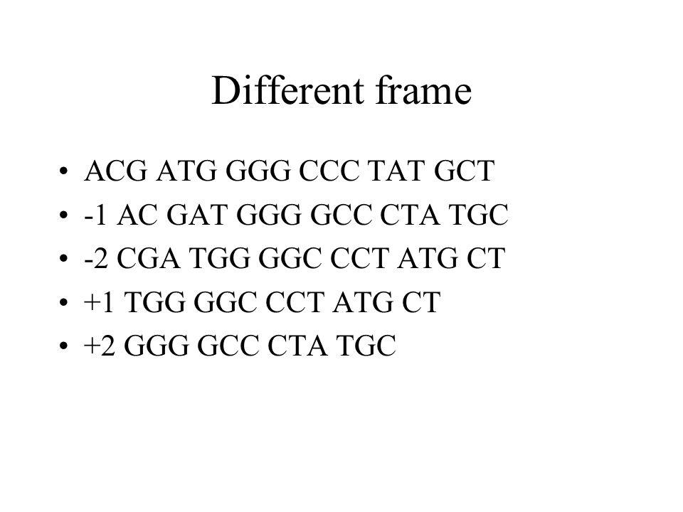 Different frame ACG ATG GGG CCC TAT GCT -1 AC GAT GGG GCC CTA TGC -2 CGA TGG GGC CCT ATG CT +1 TGG GGC CCT ATG CT +2 GGG GCC CTA TGC