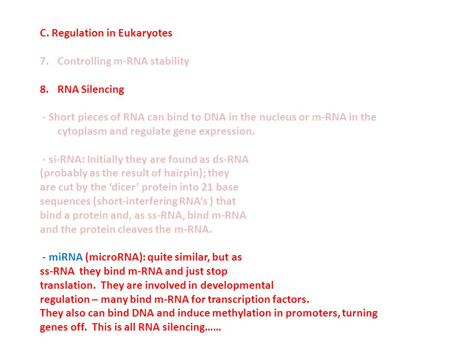 C. Regulation in Eukaryotes 7.Controlling m-RNA stability 8.RNA Silencing - Short pieces of RNA can bind to DNA in the nucleus or m-RNA in the cytopla